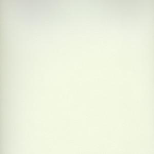 Shimmer by Corvon® - Frost Powder