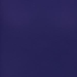 Shimmer by Corvon® - Purple Powder