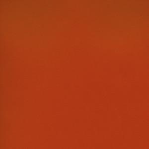Shimmer by Corvon® - Tangerine Powder