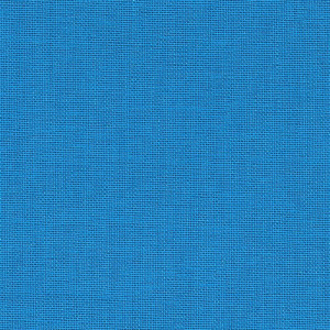 Iris - bluebell
