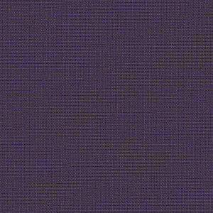 Iris - grape