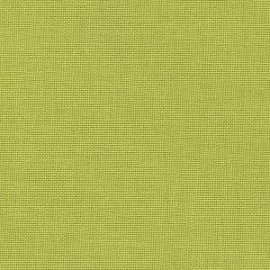 Iris - kiwi