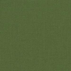 Iris - olive