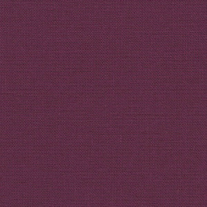Iris - raspberry