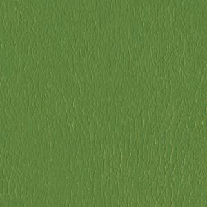 Kivar® 7 - Corinth Grass