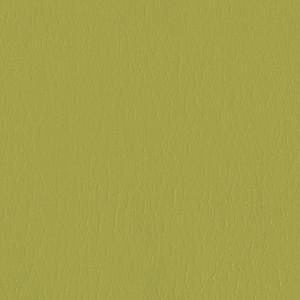 Kivar® 7 - Corinth Seedling